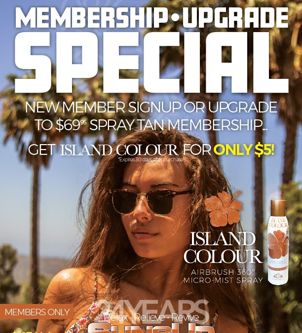 Island Colour Airbrush 360º System for only $5